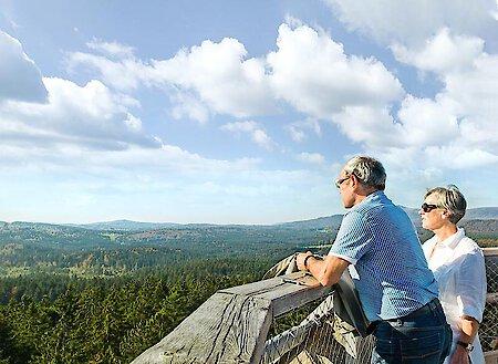 Traumhafter Ausblick vom Baumei im Nationalpark Bayer. Wald